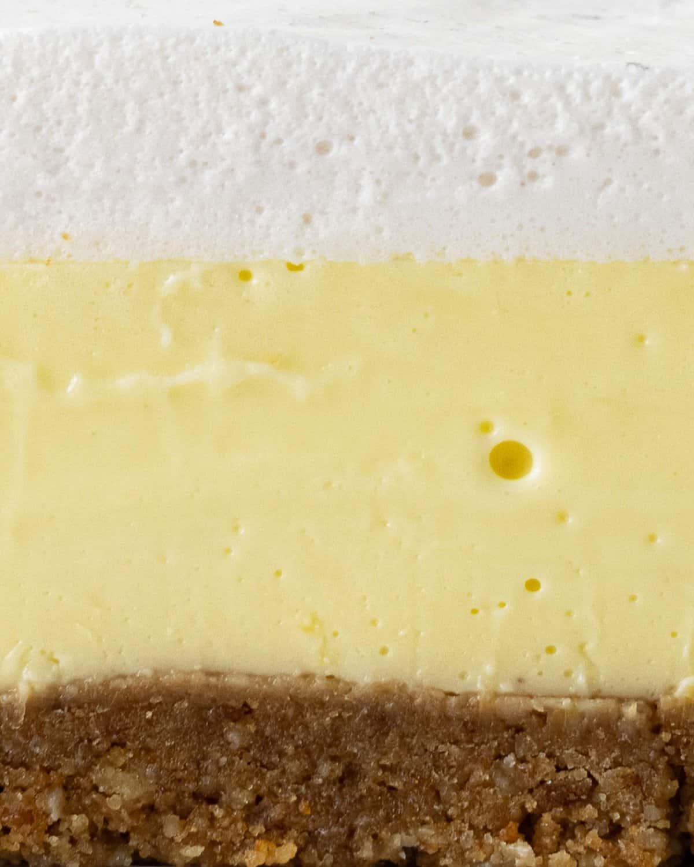 Extreme close up of Fluffy Lemon Mallow Slice